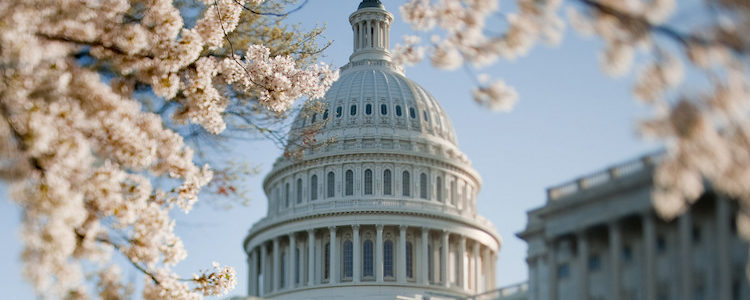 Mitch McConnell Introduces Hemp Bill to Senate