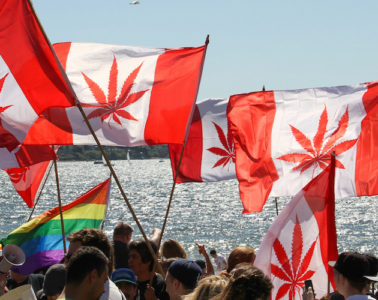 Hemp Canada Legalization Bill C-45