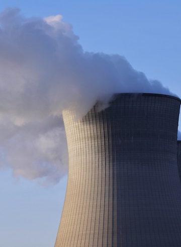 Hemp Radioactive Remediation