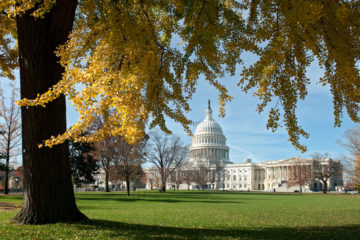 Farm Bill Delay Congress Hemp
