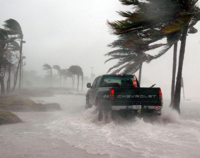 Hurricane Florence Hemp Farmers