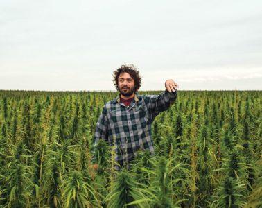 Montana Hemp Farmers