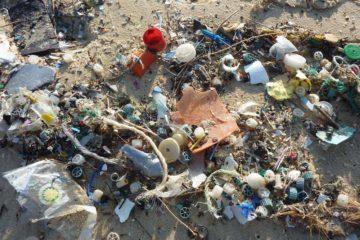 Reclaimed Ocean Plastic Hemp