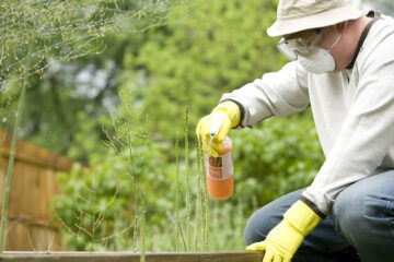 Hemp Pesticides EPA