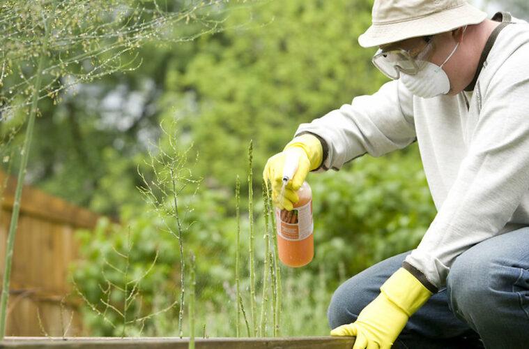 Hemp Pesticides EPA